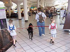Kenapa Aku Tidak Menggunakan Baby Safety Harness Untuk Anak?