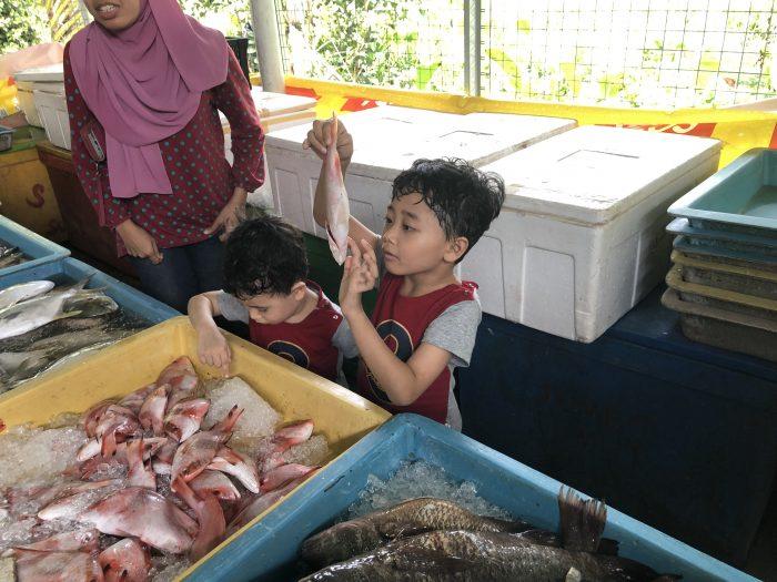 kedai borong ikan telok nipah