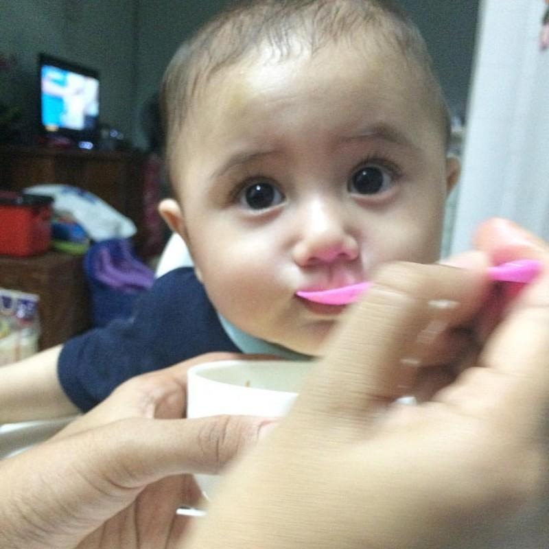 baby-8-bulan